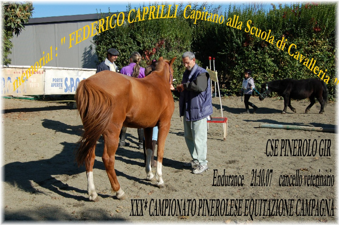 XXX�Campionato Pinerolese Equitazione di Campagna 2007 Memorial F.Caprilli Capitano alla Scuola di Cavalleria