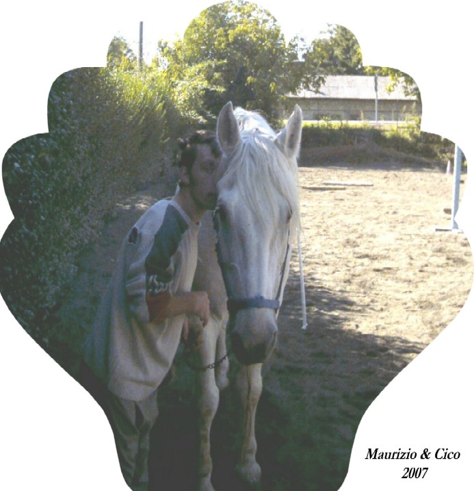 Un cavallo per Amico...