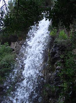 Cascata in villetta Dinegro