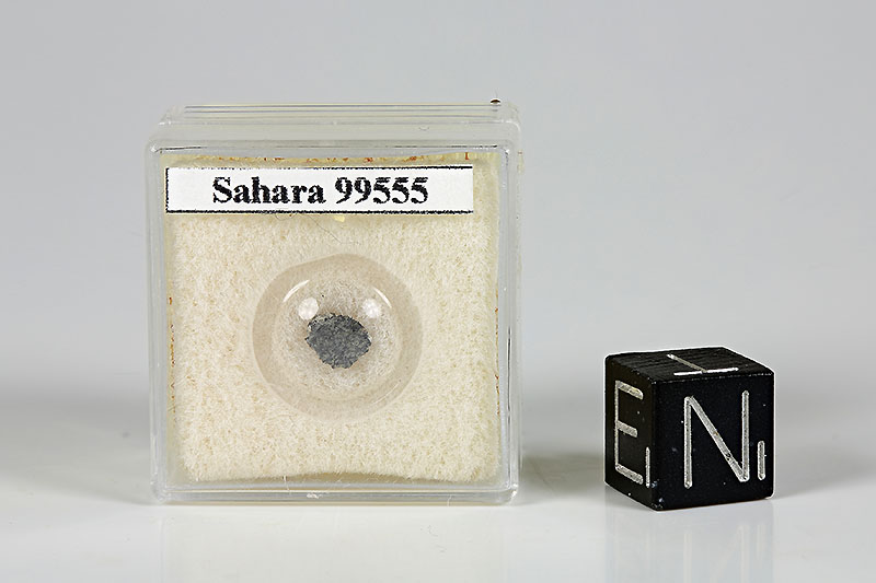 <b>SAHARA 99555</FONT></b>