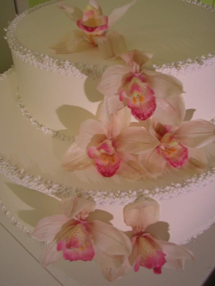 Torta a due piani con Orchidee
